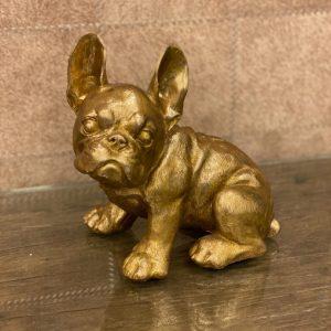 Franse bulldog goud