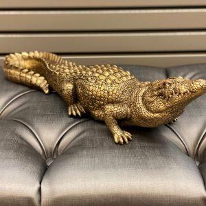 Krokodil gold